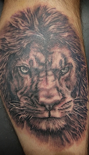 St Pete Tattoo Black and Grey Lion by Amanda Banx