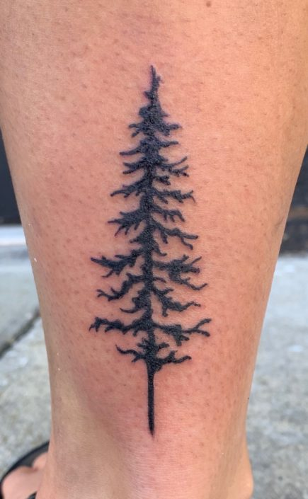 Tree Silohettte St Pete Tattoo